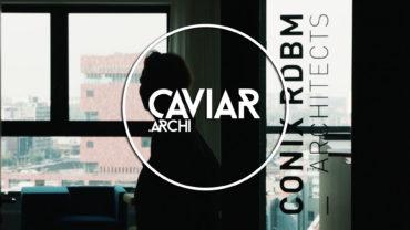 CONIX RDBM Architects : Portrait of Christine Conix